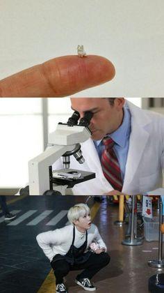 bts-min yoongi-cute-memes awwwww pero que ternunaaa! Bts Memes Hilarious, Bts Funny Videos, Funny Humor, Min Yoongi Bts, Min Suga, Foto Bts, Bts Boys, Bts Bangtan Boy, Jimin
