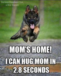 Mum's home! I can hug mum in 2.8 seconds!