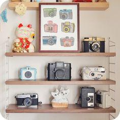 Lomos and toy cameras