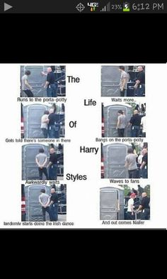 the amusing life of harry styles