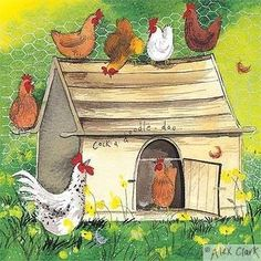 'Chicken Coop' by Alex Clark (ac138)