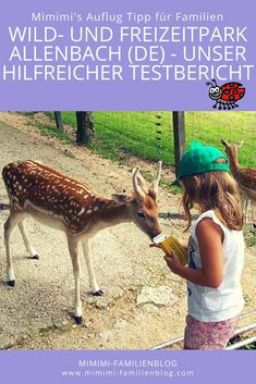 Ausflug Tipp: Wild- und Freizeitpark Allensbach (DE), Sucht ihr einen neuen Ausflug? Lest unseren Erfahrungsbericht über diesen tollen Ausflug in Süddeutschland nähe der schweizer Grenze für die ganze Familie. Egal ob mit Baby, Kleinkind oder Kind. Für mehr Informationen, lest unseren Test Bericht.