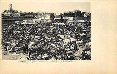 Cleburne Texas TX 1908 Market Square Horses Wagons Albertype Vintage Postcard