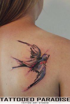 watercolour swallow bird - Google Search