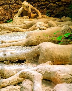 """This was a very difficult photo to take as I cried profusely while capturing this emotional """"... image of plaster casts of a family of dead bodies in ancient Pompeii Italy."""""""