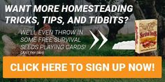 Want more homesteading tricks, tips and tidbits? Click here to sign up NOW! We'll even throw in some FREE Survival Seeds Playing Cards!