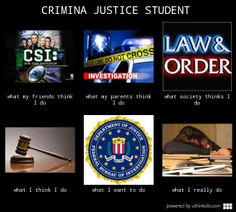 Criminology most lucrative majors 2017