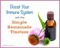 Simple Homemade Tincture to Help Boost Immunity ~ via www.diynatural.com/how-to-boost-immune-system/