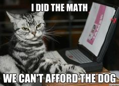 Google Image Result for http://weknowmemes.com/wp-content/uploads/2012/03/i-did-the-math-lolcat.jpg