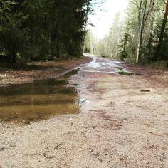 Aamulenkki sateen jälkeen, running after rain