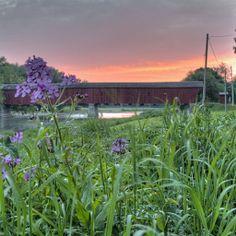 Kissing Bridge: West Montrose, Ontario Waterloo Ontario, Kissing, Bridge, Plants, Bridges, Plant, Planets, Attic, Bro