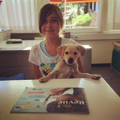 Helping with homework Mans Best Friend, Best Friends, Labrador Retriever, Homework, Dogs, Instagram Posts, Animals, Beat Friends, Labrador Retrievers