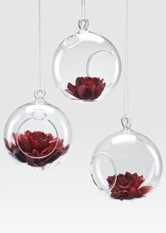 So cool, and a less expensive alternative to pomanders for hanging flowers.