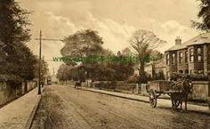 Dublin (South) - Terenure - Dublin - old photo Dublin City, Emerald Isle, City Council, Vintage Photographs, Garden Paths, Old Photos, Past, Country Roads, River