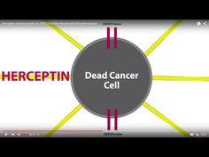 How Herceptin Cancer Treatment Works - Oncology Associates Cancer Treatment Specialists | Omaha, NE