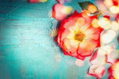 Lovely red flower on turquoise by VICUSCHKA on @creativemarket