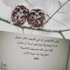 """""""بعض الأشخاص كالخبيئة #رفيقة_الجزائرية #يوما_ما■■■م"""