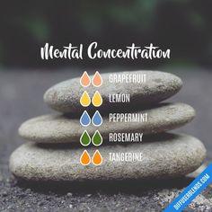 Mental Concentration EO Diffuser Blend