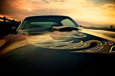 Trans AM Firebird Formula, Pontiac Firebird Trans Am, My Dream Car, Dream Cars, America Muscle, Old Muscle Cars, American Legend, American Motors, Hot Wheels Cars