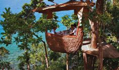Dine in a floating tree pod in Thailand
