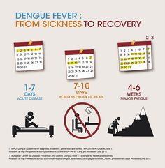 Dengue fever: from sickness to recovery by Sanofi Pasteur, via Flickr