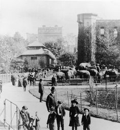 ..A group of children pose near the elepphant pen in Central Park Zoo, New York, New York, late 1800s. (Photo by Hulton Archive/Getty Images)