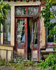 I'd walk through this door - would you?  Wonder what mysteries wait inside?