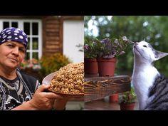 Φύτευση νέων λουλουδιών και μαγείρεμα τσακ - τσακ - YouTube