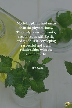 """Shift Your World Shift Your World,Inspirational Quotes """"Medicine plants heal more than the physical body. They help open our hearts, reconnect us with Spirit, and guide us in developing respectful and joyful relationships with. Healing Herbs, Holistic Healing, Natural Healing, Natural Medicine, Herbal Medicine, Medicine Quotes, Plants Quotes, Herbal Magic, Naturopathy"""