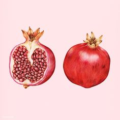 Illustration of isolated pomegranate watercolor style | premium image by rawpixel.com