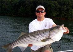 Lake Lanier Fishing Guides, Striper Fishing, Georgia Fishing Trip.