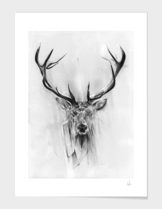 """""""Red Deer"""", Numbered Edition Fine Art Print by Alexis Marcou - From $42.00 - Curioos"""