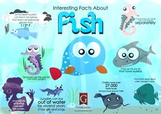 Random facts and interesting trivia for the curious mind about fishes. Credit: facts.randomhistory
