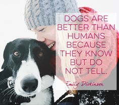 Words by Emily Dickinson - Quotes That Will Melt Every Animal Lover's Heart - Photos