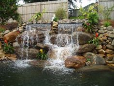 Tropical Waterfalls And Ponds