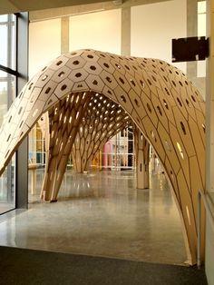 Concha/techo de cartón