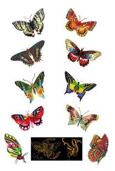 Butterflies by Glenn Harris OUT-1Z188 [EPB153] - $10.00 : Embroidery Passbook Mall, Instant download Embroidery Designs