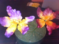 Gum Paste Cattleya Orchid Class, taught by Mame Wolfe!