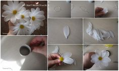 Diy Projects: How to Make Daisy FLower
