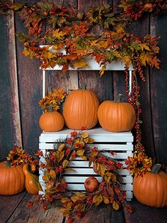 Fall Stand 4 - 60x80