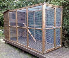 Large Outdoor Cat Enclosure   Outdoor Cat Runs