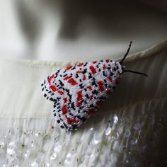 Etsy の Moth brooch by SecretSecretGarden