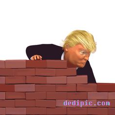 The perfect Trump Wall Donald Animated GIF for your conversation. Funny Quotes, Funny Memes, Hilarious, Donald Trump Caricature, Donald Trump Funny, Satire Humor, Trump Cartoons, Funny Caricatures, Gif Animé