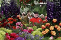 The Chelsea Flower Show 2013