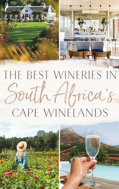 All within a short drive of Cape Town, the best wineries to visit in South Africa's Cape Winelands region – Stellenbosch and Franschhoek – and other lesser known spots. All of these wineries would be easy destinations for a day trip! Travel Photographie, Africa Destinations, Holiday Destinations, Travel Destinations, Wine Safari, Cape Town South Africa, South Africa Safari, East Africa, African Safari
