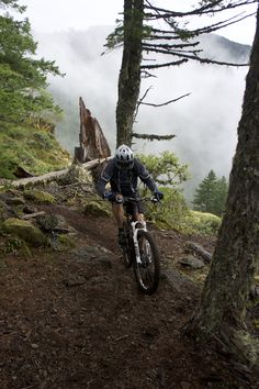 Oakridge, Oregon: The Greatest Trails You've Never Ridden | The ...