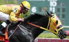 ¿Sabes qué es el Turf? Conoce todos los datos sobre la carrera de caballos, sus apuestas, jinetes y entrenadores. Aprende todo acerca de este deporte.  http://www.linio.com.mx/deportes/