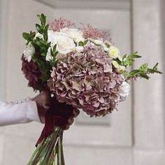 Discover recipes, home ideas, style inspiration and other ideas to try. Red Rose Bouquet, Hydrangea Bouquet, Hand Bouquet, Ranunculus Bouquet, Bridal Flowers, Love Flowers, Beautiful Flowers, Bride Bouquets, Bridesmaid Bouquet
