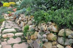 Hillside Landscaping Design Ideas, Pictures, Remodel, and Decor - page 19