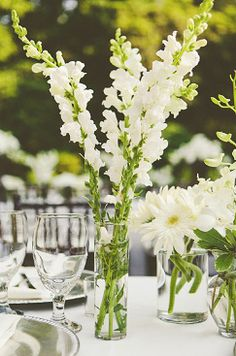 beautiful white wedding flowers for a table setting at a rustic mountain wedding venue love the snap dragons? Wedding Ceremony Flowers, White Wedding Flowers, White Flowers, Wedding Bouquets, Wedding Shoes, Wedding Venues, Wedding Rings, September Wedding Flowers, Wedding Centerpieces